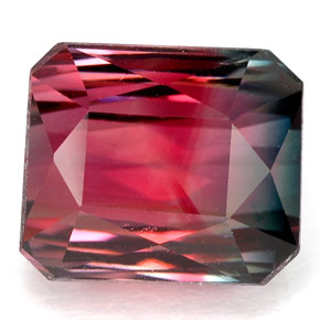 Octagon Cut Bi Color Tourmaline