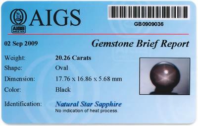 AIGS Gemstone Brief Report