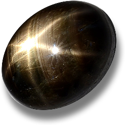 Golden Ray Black Star Sapphire Cabochon