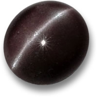 Brown Cat's Eye Sillimanite Gemstone
