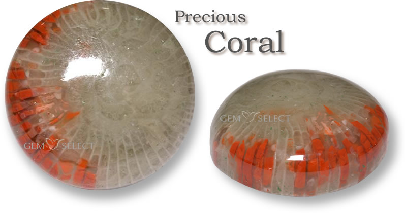 Buy Coral Gemstones for Taurus from GemSelect - Large Image