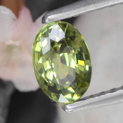 Demantoid Garnet with Adamantine Luster