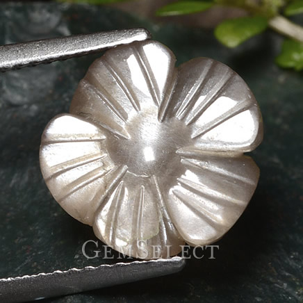 Flower-Cut Moonstone