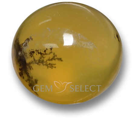 Moss Opal Gemstones from GemSelect - Large Image