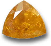 Faceted Scheelite Gemstone