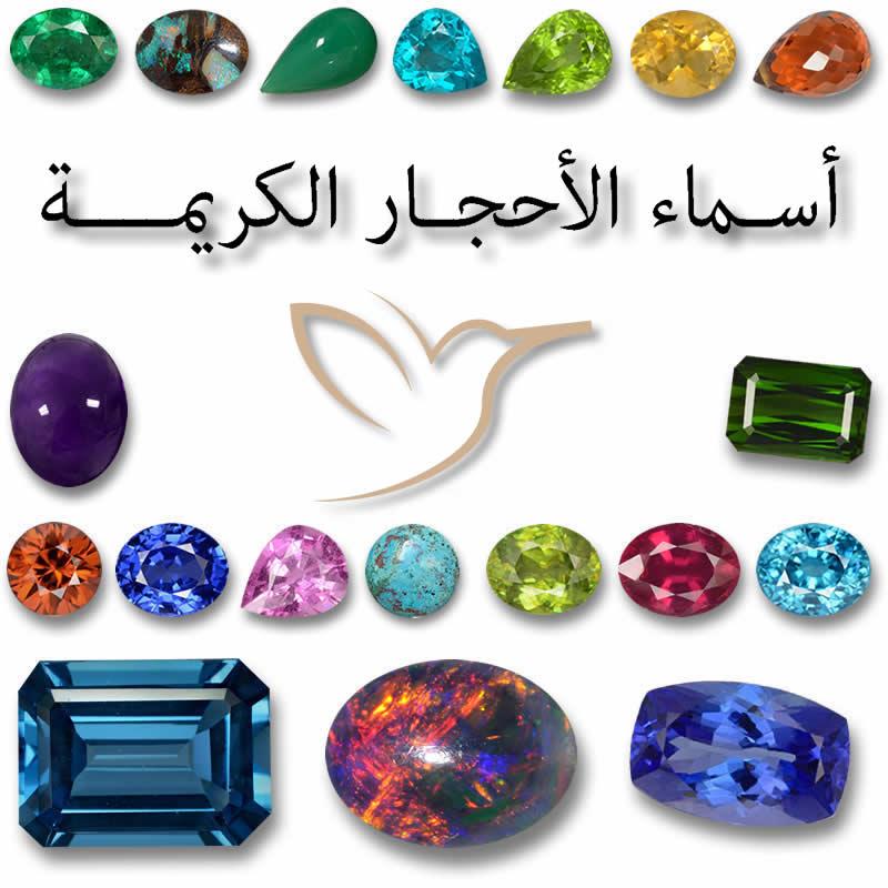 Pelagic برمودا نشوة انواع المجوهرات والحلى والاحجار الكريمة Loudounhorseassociation Org
