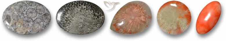 Pedras preciosas corais