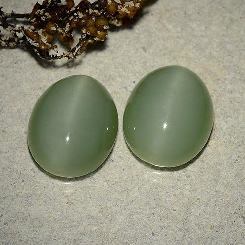 Green Actinolite Cat's Eye Gem - 6.1ct Oval Cabochon (ID: 485747)