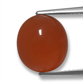 Medium Red Agate Gem - 4.8ct Oval Cabochon (ID: 458142)