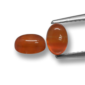 Orange Agate Gem - 0.7ct Oval Cabochon (ID: 459627)