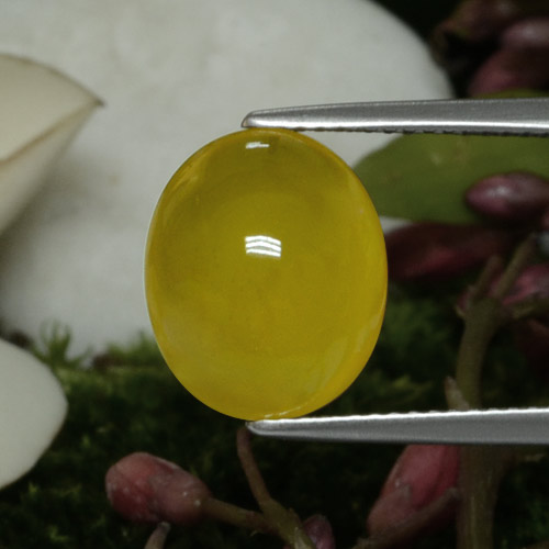 Light Honey Yellow Ágata Gema - 5.4ct Cabujón Óvalo (ID: 467618)