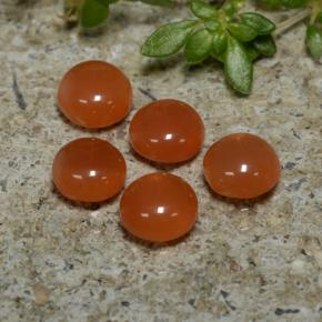 Orange Agate Gem - 0.5ct Round Cabochon (ID: 471564)