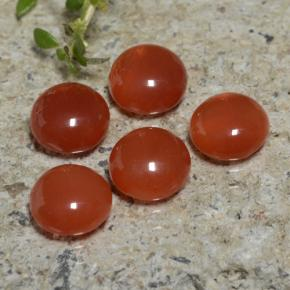 Reddish Orange Agate Gem - 0.8ct Round Cabochon (ID: 471637)