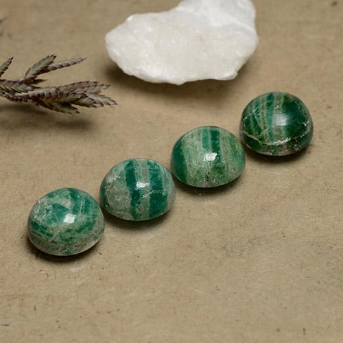 Pine Green Amazonite Gem - 2.2ct Round Cabochon (ID: 490978)