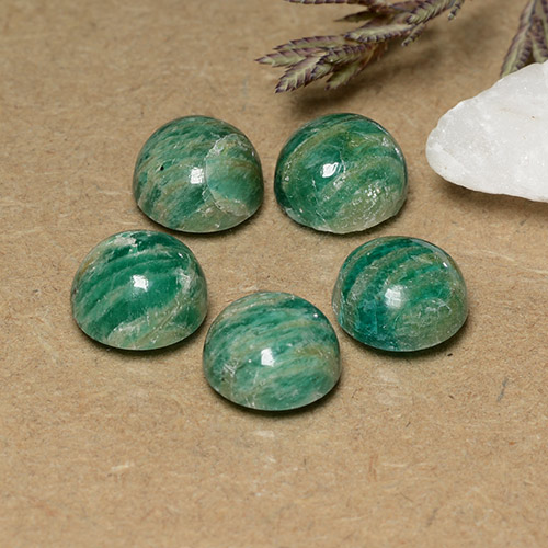 Pine Green Amazonite Gem - 2.2ct Round Cabochon (ID: 491013)