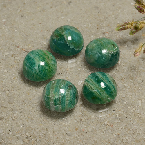 Cool Pine Green Amazonite Gem - 3.2ct Round Cabochon (ID: 491144)