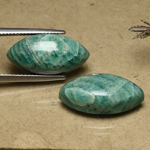 Pine Green Amazonite Gem - 9.6ct Marquise Cabochon (ID: 491734)