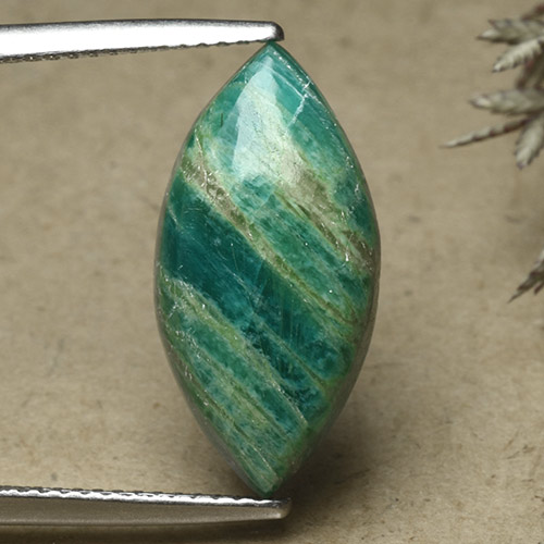 Pine Green Amazonite Gem - 5.7ct Marquise Cabochon (ID: 492111)