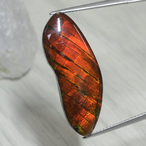 15.5ct Fancy Cabochon Multicolor Ammolite Gem (ID: 281107)