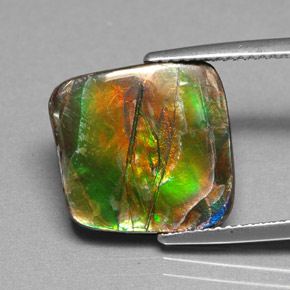 Buy 6.25 ct Multicolor Ammolite 14.27 mm x 13.9 mm from GemSelect (Product ID: 284775)