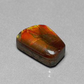 Buy 6.41 ct Multicolor Ammolite 14.40 mm x 10.2 mm from GemSelect (Product ID: 295196)