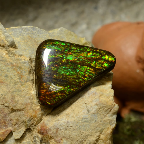 Multicolor Ammolite Gem - 10.3ct Trillion Cabochon (ID: 295258)