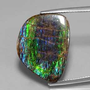 15.8ct Fancy Cabochon Multicolor Ammolite Gem (ID: 377445)