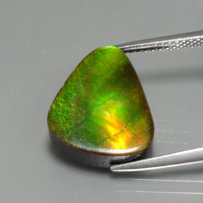 Multicolor Ammolite Gem - 6.8ct Fancy Cabochon (ID: 377493)
