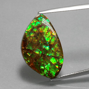 Multicolor Ammolite Gem - 11.6ct Fancy Cabochon (ID: 377513)