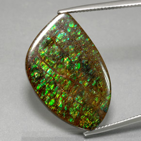 Multicolor Ammolite Gem - 21.3ct Fancy Cabochon (ID: 377635)