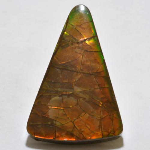 Multicolor Ammolite Gem - 20.4ct Trillion Cabochon (ID: 377637)