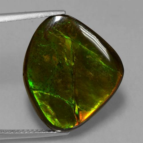 Multicolor Ammolite Gem - 14.7ct Fancy Cabochon (ID: 451514)