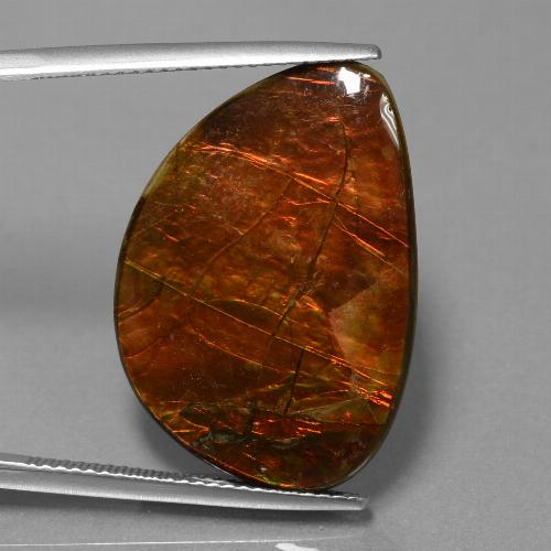18.5ct Fancy Cabochon Multicolor Ammolite Gem (ID: 451523)