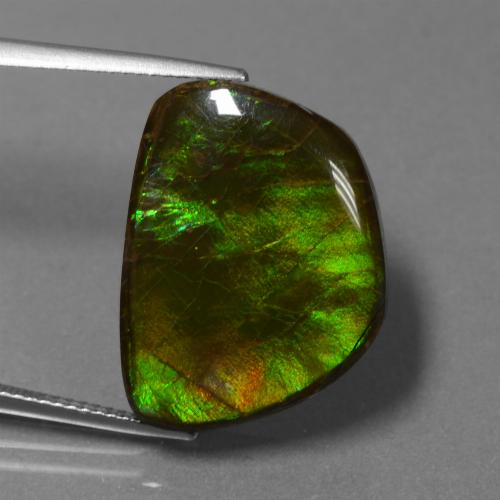 17.1ct Fancy Cabochon Multicolor Ammolite Gem (ID: 451526)