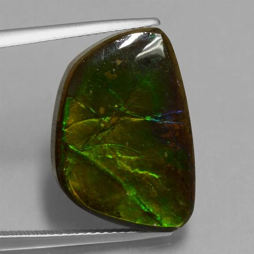 14.7ct Fancy Cabochon Multicolor Ammolite Gem (ID: 451539)