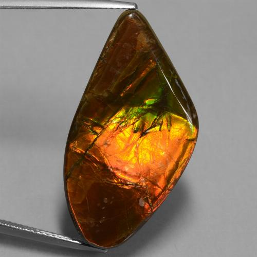 21.7ct Fancy Cabochon Multicolor Ammolite Gem (ID: 451542)