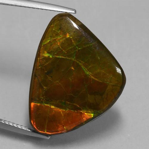 15.2ct Fancy Cabochon Multicolor Ammolite Gem (ID: 451545)
