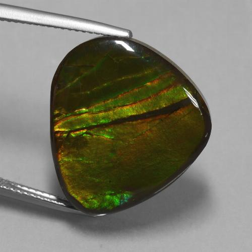 Multicolor Ammolite Gem - 16.7ct Fancy Cabochon (ID: 451546)