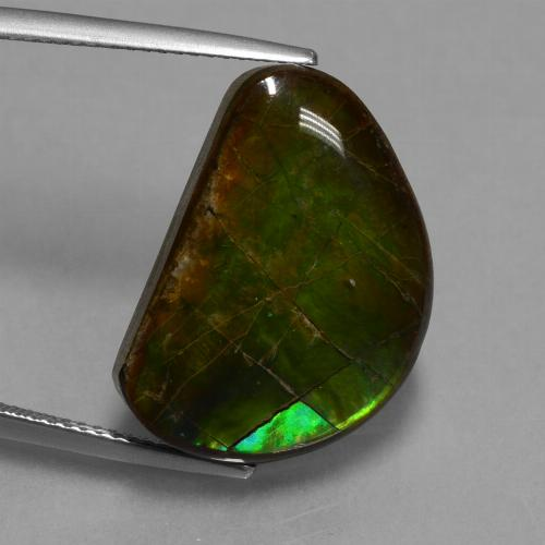 15.9ct Fancy Cabochon Multicolor Ammolite Gem (ID: 451551)