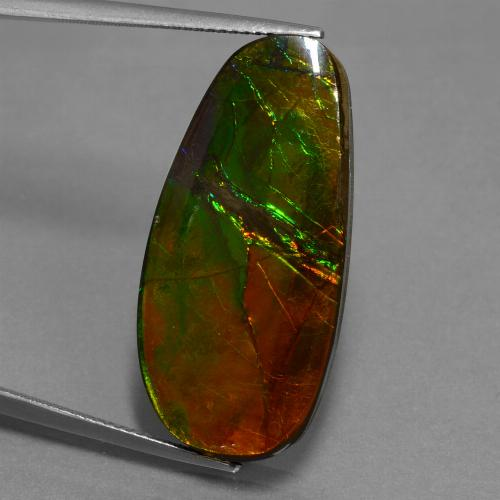 21.6ct Fancy Cabochon Multicolor Ammolite Gem (ID: 451616)