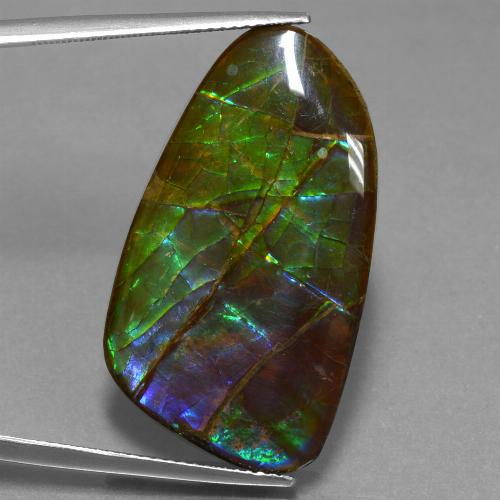 23.2ct Fancy Cabochon Multicolor Ammolite Gem (ID: 451617)