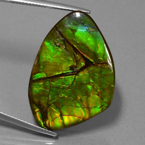 24.5ct Fancy Cabochon Multicolor Ammolite Gem (ID: 451623)