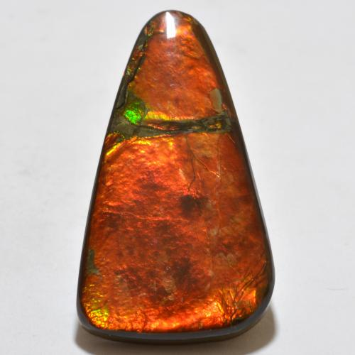 Multicolor Ammolite Gem - 23ct Fancy Cabochon (ID: 451624)