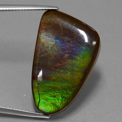 Multicolor Ammolite Gem - 22.8ct Fancy Cabochon (ID: 452683)