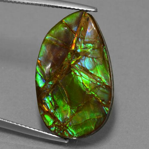 thumb image of 18.2ct Fancy Cabochon Multicolor Ammolite (ID: 452687)