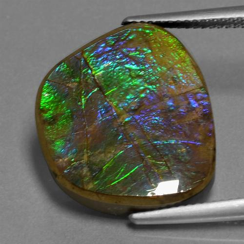 15ct Fancy Cabochon Multicolor Ammolite Gem (ID: 452736)