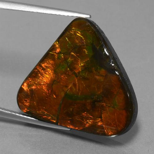 Multicolor Ammolite Gem - 22.4ct Trillion Cabochon (ID: 452764)