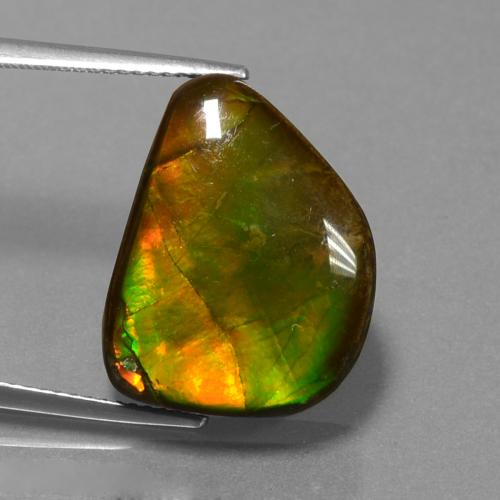 Multicolor Ammolite Gem - 13.3ct Fancy Cabochon (ID: 452774)