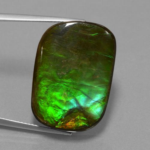 Multicolor Ammolite Gem - 22ct Cushion Cabochon (ID: 452914)