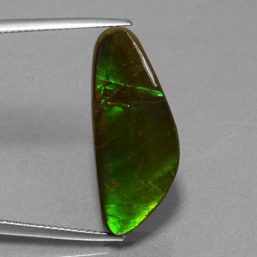 10.8ct Fancy Cabochon Multicolor Ammolite Gem (ID: 452916)